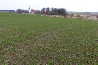 Vindumovergaard mark